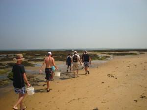 La pêche sur le littoral Vendéen