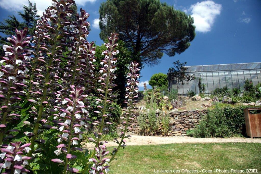 jardin des olfacties près du camping
