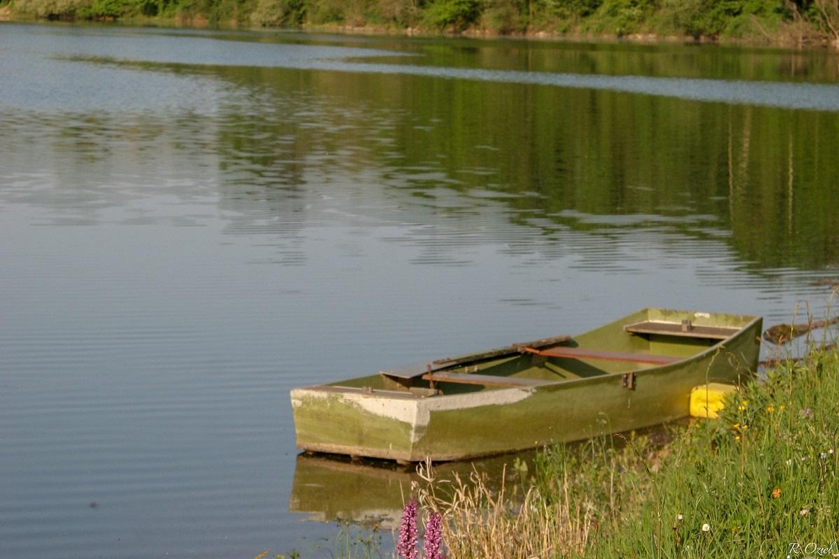 barque pour la pêche