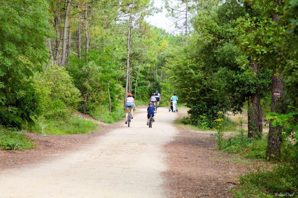 vélo pistes cyclables Vendée